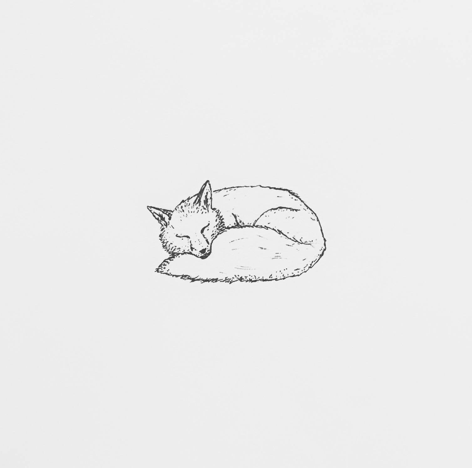 Nature –Fox